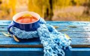 Осень в тепле: ТОП-5 лучших чайных напитков октября